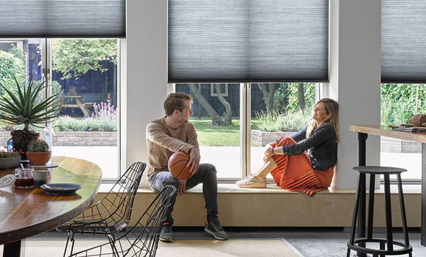 Powerview Motorisation - Automatic window blinds and shades